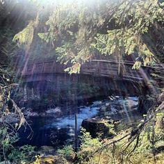 Middle Bridge upstream of the Upper Falls at Little Qualicum Falls Provincial Park (Vancouver Island)