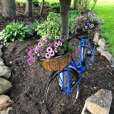 Sharing a bike art project Mike worked on last year. Can you tell we have a thing for bikes 🚲😉We found this bike at a local thrift shop. Mike took it apart and removed the tires and chain. Then he used our trusty oil rubbed bronze to