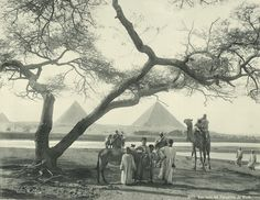 old vintage photos of egypt 1870-1875 (15)