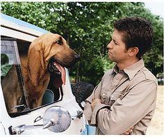 Josh Tuner. Get more pictures >> http://www.gactv.com/gac/ar_az_josh_turner/article/0,3097,GAC_27010_4844634_40,00.html
