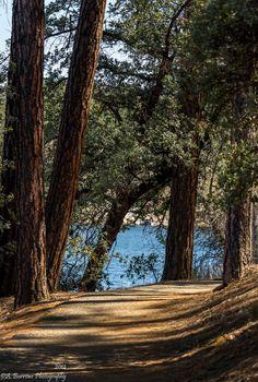 Lynx Lake Trail, Prescott, Arizona