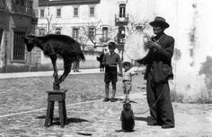 Lisbon simple street entertainment from a time gone by.