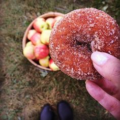 So, Apple cider donut is like heaven in a bite.✨❤️✨ 9.18.16 @ibakefilm // #donuts #nomnom #pslilyboutique #fall #getinmybelly #fromwhereistand #sunday #food #foodporn #yumm #lafashionblogger #food #foodie #instagood #instagram #lafashionblogger #la #blogger #blog #foodie #favorite #lifestyle #travel #travelblogger #traveler #omg