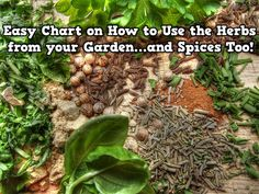 EASY CHART ON HOW TO USE THE HERBS FROM YOUR GARDEN…AND SPICES TOO!