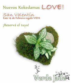 Nuevos Kokedamas LOVE!  Este San Valentín regala vida!  Reservalos!  www.VerdeJade.com  Facebook: https://www.facebook.com/TerrariosVerdeJade