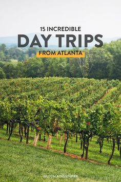 Looking for an easy getaway? Here's our local guide to the best day trips from Atlanta Georgia with tips on what to do, where to eat, and more // Local Adventurer #roadtrip #visittheusa #localadventurer #rockcitygardens #lookoutmountain #hiking #travelblog