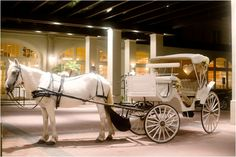 Horse carriage for the bride & groom ~ Photo: MiaBella Photography