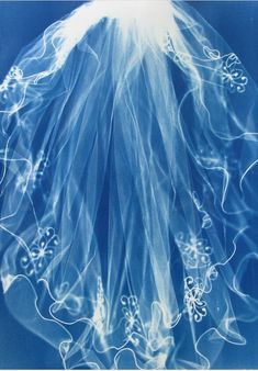 Image result for cyanotype fabric artist