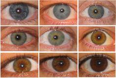 eyes-400.jpg
