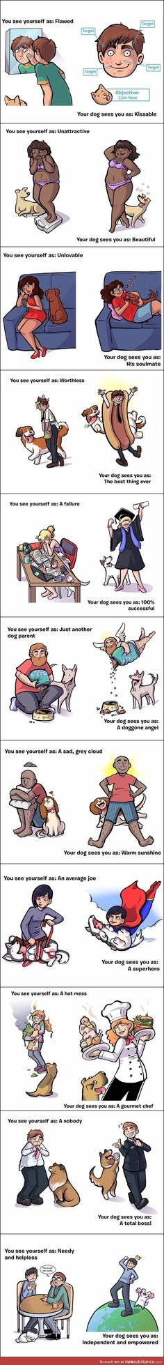 It's called unconditional love ❤️ Dog find it easy  humans, not so much!
