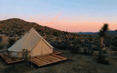 20 Best Airbnb Listings in Joshua Tree National Park Camping joshua tree camping Joshua Tree Camping, Joshua Tree Airbnb, Family Camping, Tent Camping, Camping Hacks, Outdoor Camping, Camping Ideas, Camping List, Camping Outdoors