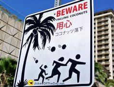 Falling Coconuts sign (@ Waikiki Beach).        Wouldn't that just suck. Happened to someone I know and was not fun.