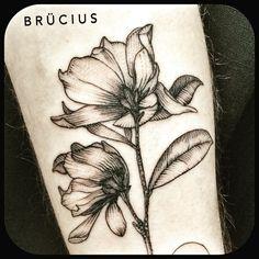 brucius magnolia tattoo - Google Search