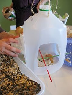 Bird feeder from a milk jug.
