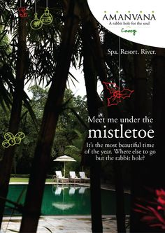 Meet me under the #Mistletoe