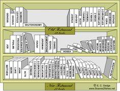 Bible Library NT / Bibel-Bibliothek Neues Testament   идея для ...