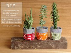 D.I.Y: fabric baskets for mini succulents