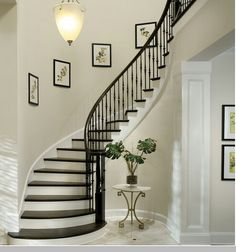 Cool Wrought Iron Balusters vogue Tampa Traditional Staircase Remodeling ideas with bullnose capped baseboard closed staircase curved staircase dark wood balusters dark wood tread elephant House Design, Painted Staircases, Staircase Decor, Traditional Staircase, Staircase Railings, Staircase Design, Wrought Iron Stairs, Wrought Iron Staircase, Arthur Rutenberg Homes