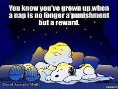 Image result for peanuts funny quotes