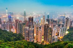 Hong Kong Govt Offers Crash Course on Cryptocurrency ICOs to the Public