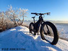 fatck rhino fat bike-11 Fat Bike, Motorcycle, Motorcycles, Motorbikes, All Terrain Bike, Choppers