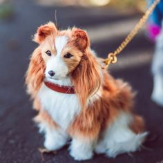 Collie Puppies, Collie Dog, Dogs And Puppies, Grey And White Cat, Grey Cats, Labradoodle, Siamese Cats, 18 Inch Doll, Little Dogs