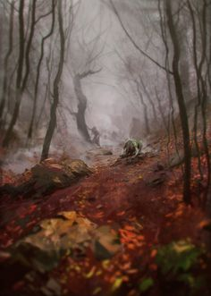 Something in the forest by Hamsterfly