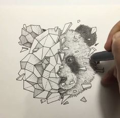 Image result for kerby rosanes geometric beasts