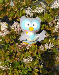 Bom Dia Alegria ♥ Uma Corujinha com um Passarinho mo meu jardim ♥