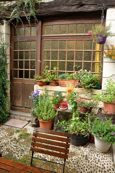 Put lots of different size pot plants together to make an awesome arrangement on the patio - #DIYGardenIdeas