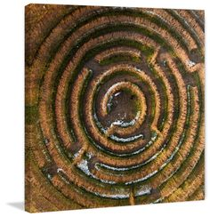Crop Circle - Marmont Hill