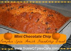 Chocolate Chip Pumpkin Spice Amish Friendsh Bread from SusieQTpies Cafe Friendship Bread Recipe, Friendship Bread Starter, Amish Friendship Bread, Pumpkin Butter, Pumpkin Spice, Amish Recipes, Sweet Recipes, Bread Recipes, Pumpkin Recipes