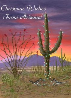 desert christmas cards | Southwest Christmas / Holiday Cards...Boxed Cards..Personalized Cards ...