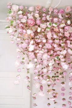 Ceiling display of pink roses