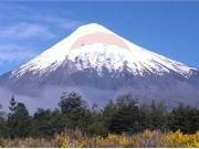 Increíbles Parcelas A Pasos De Frutillar Puerto Octay, Mount Rainier, Mountains, Nature, Travel, Lakes, Paths, Country, Cities