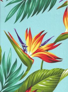 Tropical Hawaiian Bird of Paradise flowers and leafy palm fronds cotton poplin apparel fabric.More fabrics at BarkclothHawaii.com