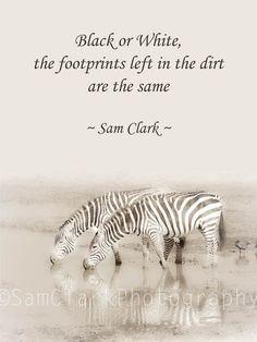 Sam Clark Photography