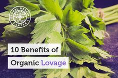 Lovage is a natural food that has been consistently linked to joint support, lung strengthening, and even allergy relief. Relieve Gas, Reduce Bloating, Natural Remedies, Herbal Remedies, Kidney Health, Medical Conditions, Herbal Medicine, Natural Healing, Health Benefits