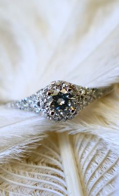 White Gold Contemporary Halo Engagement Ring - that a whole lot of sparkle! Jewelry Box, Jewelry Accessories, Jewlery, Ring Verlobung, Dream Ring, Diamond Are A Girls Best Friend, Girly Things, Beautiful Rings, Just In Case