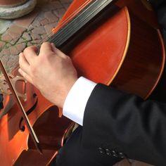 Music&Co. Events and Wedding Music Tuscany and Lights effects Wedding Music, Light Effect, Corporate Events, Tuscany, Musicians, Lights, Corporate Events Decor, Tuscany Italy, Lighting