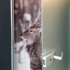 How to show The doors? #2kulproject and #opendoors #retaildesign #krakow #dlh #interiordesign #detail #deer #project