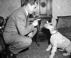 Lucky Luciano with Dog by  Unknown Artist