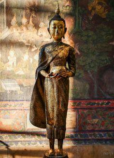 Buddha Painting, Painting Canvas, Thai Buddha Statue, Amazing India, Gautama Buddha, Sculpture Painting, Daily Meditation, Animal Skulls, Thailand