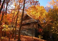 Heaven's Eyes #2815 | 2 Bedroom Cabins | You can see where this cabin got it's name! It is simply gorgeous!