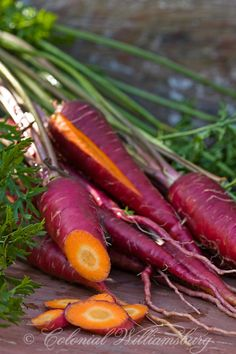 Purple Carrots from the Colonial Nursery Garden. // Great Gardens & Ideas //