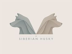 The Siberian Husky  by Yoga Perdana