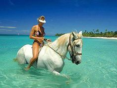 Vieques, Puerto Rico. Riding a horse in the ocean with my sister is just heavenly