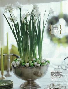 Top your Christmas table with - Pretty paperwhites Place paperwhites in a large compote or bowl. Cover the potting soil with mini ball ornaments in colors that coordinate with your holiday scheme. Noel Christmas, Simple Christmas, Winter Christmas, Winter Holidays, All Things Christmas, Christmas Paper, Christmas Balls, Christmas Ornaments, Christmas Flowers