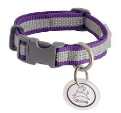 OllyDog MTN Reflective Collar, Small, Plum ** Want additional info? Click on the image. (This is an affiliate link and I receive a commission for the sales) #CatLovers