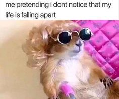 Really Funny Memes, Stupid Funny Memes, Funny Relatable Memes, Funny Texts, Funny Stuff, Fun Funny, Funny Things, Random Things, Frases